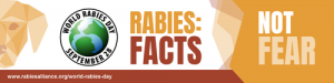 World Rabies Day How to Protect Your Pet